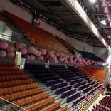 balony jumbo hala