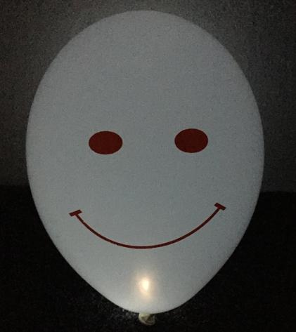 LED světlo do balónku bílé 10 ks