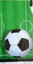 Fotbal ubrus 137cm x 213cm