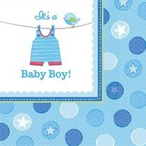 Ubrousky Baby Boy 16 ks 33 cm x 33 cm