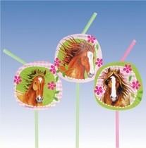 Kůň slámky 8ks