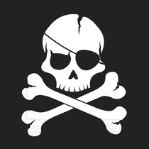 Piráti ubrousky 20 ks 2 - vrstve, 33 cm x 33 cm